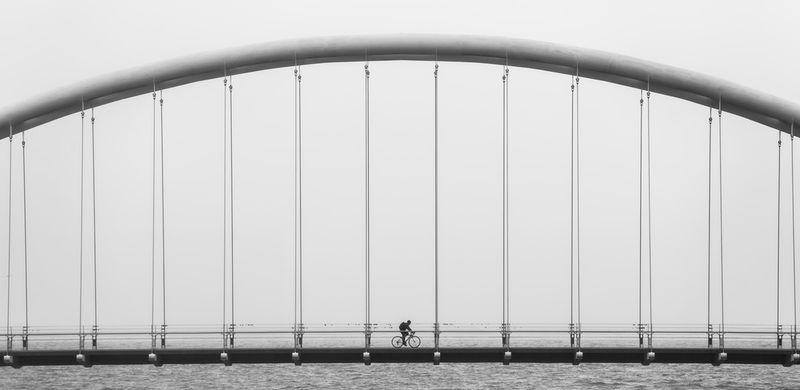 Bridge-baby-boomers