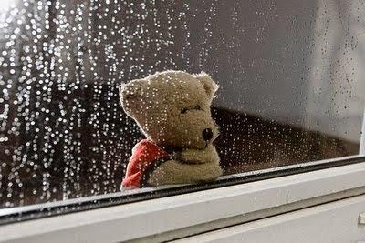 Love-Failure-sad-Teddy-waiting-rain-glass-photography-image